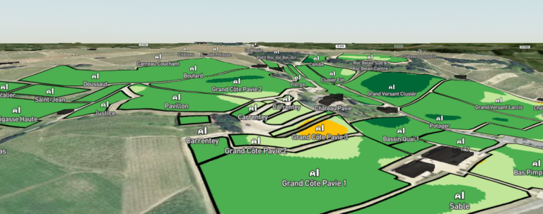 3D Saturnalia map for Chateau Pavie